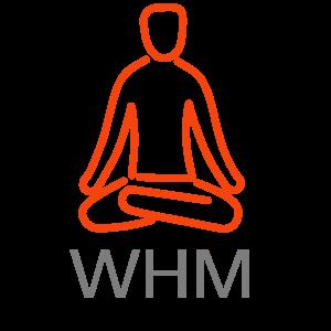 Reset Haarlemmermeer - Logo